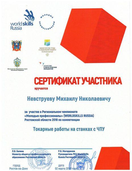 Сертификат Невструев Михаил Николаевич