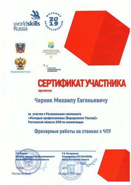 Сертификат Черник Михаил Евгеньевич